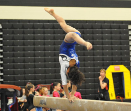 Everest Gymnastics 66